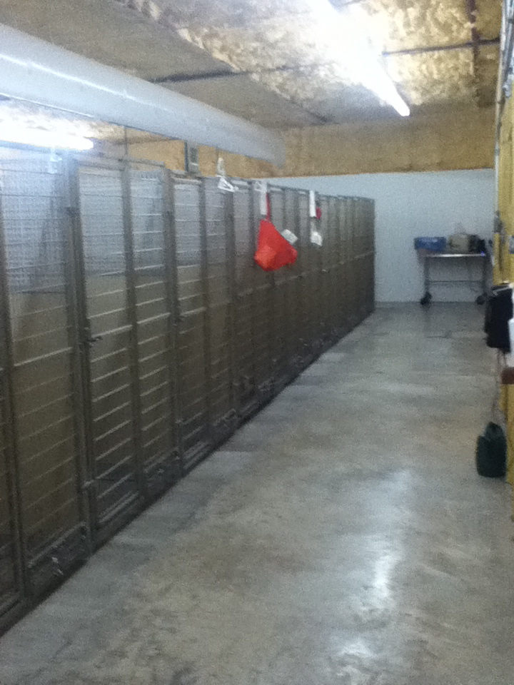 Kennel Room Photo